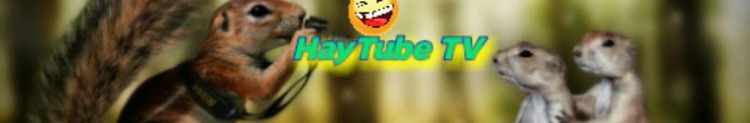 HayTube TV