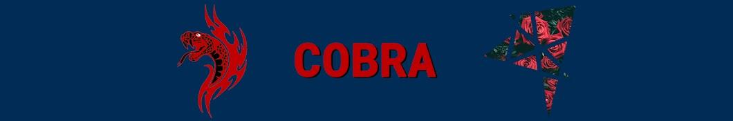 T_Cobra Banner