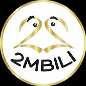 2mbili Tv net worth
