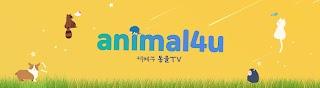 KBS animal TV : animal4u