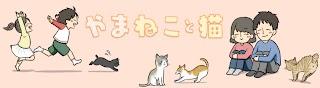 yamaneko with cats