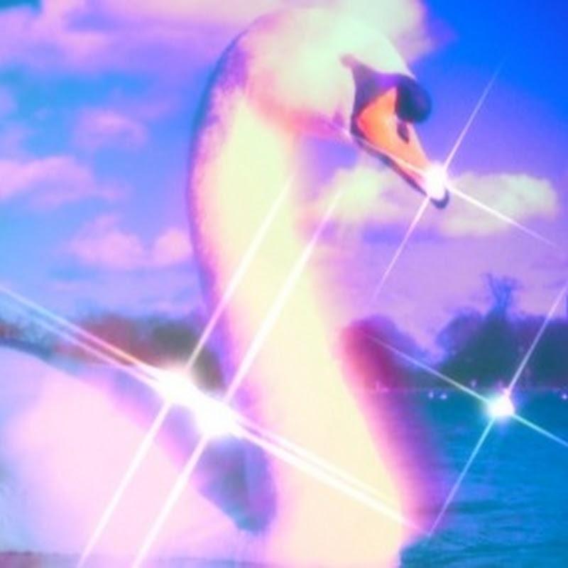 Cosmic Swan (cosmic-swan)