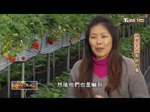 cama咖啡創辦人何炳霖 4坪到五億 看板人物 20170219 (完整版)