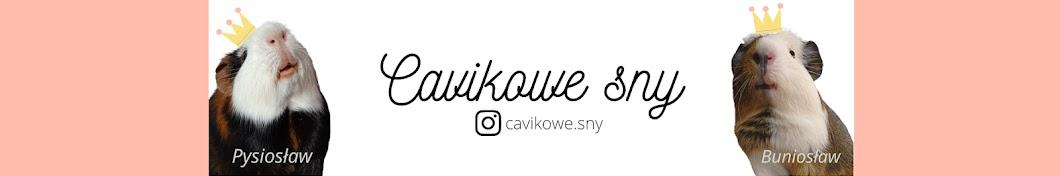 Cavikowe sny Banner