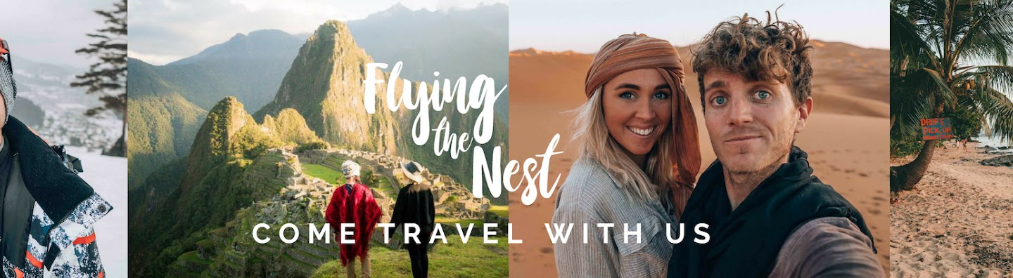 Flying The Nest's Cover Image