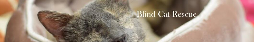 Blind Cat Rescue & Sanctuary, Inc