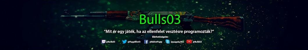 Bulls03