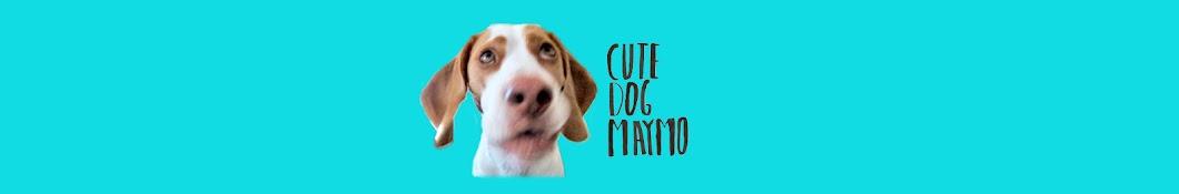 Maymo YouTube channel avatar