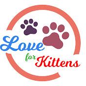 Love For Kittens YT