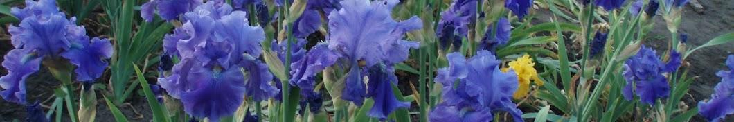 Талла Х. Цветы