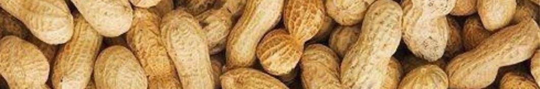kacang jerr