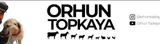 Orhun Topkaya
