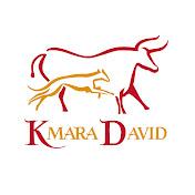 kmara David