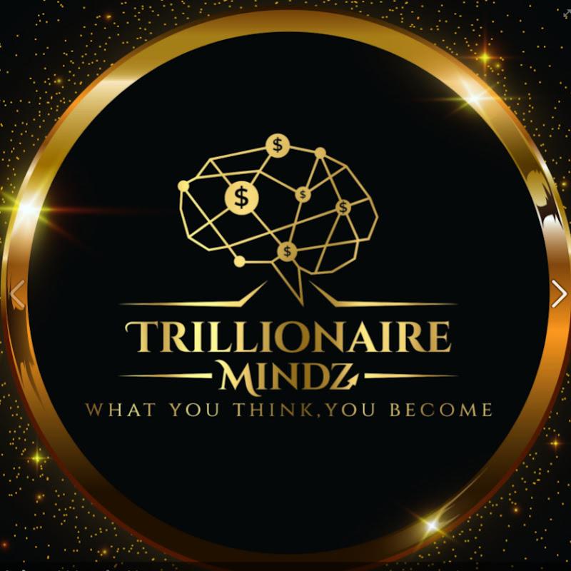 Trillionaire Mindz World Venture Pvt Ltd