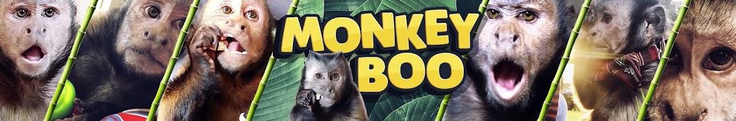 MonkeyBoo