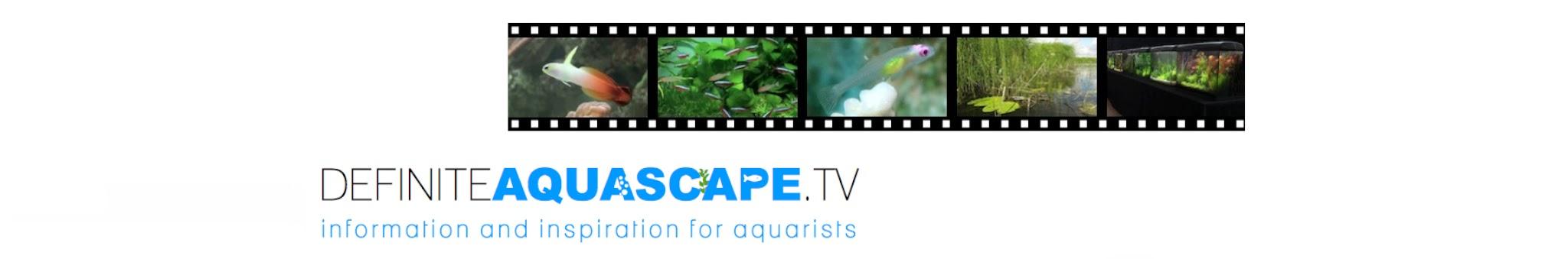 DefiniteAquascapeTV