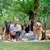 The Golden Family