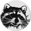 Raccoon TV