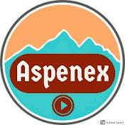 Aspenex net worth
