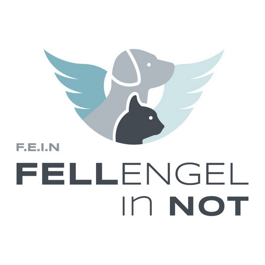 fellengel-in-not