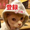 【Nyairudo heart】Animal rescue 【cat and dog】