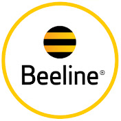 Beeline KG net worth