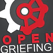 OpenGriefing net worth