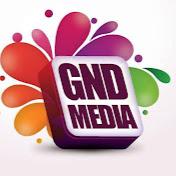 GNDMedia GNDInc net worth