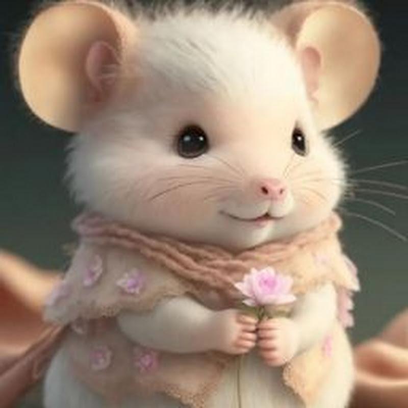 Nayan Bhardwaz (nayan-bhardwaz)