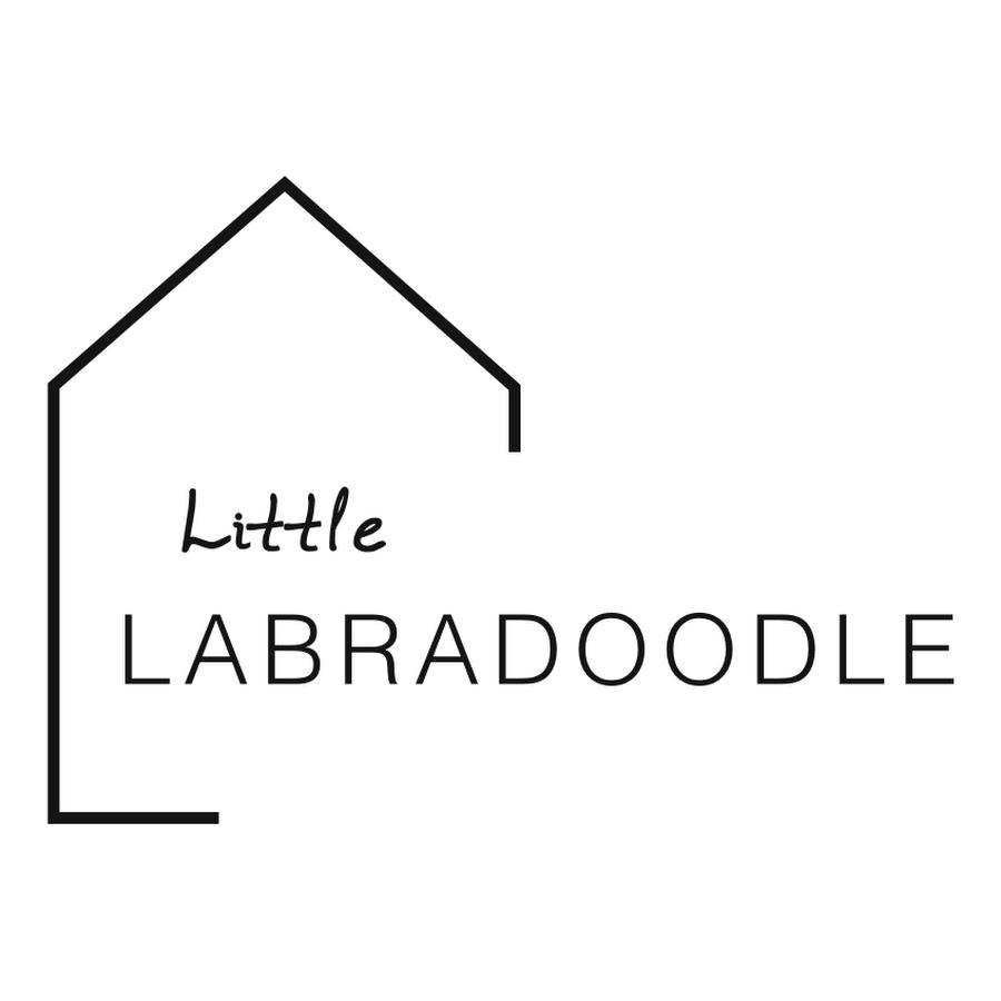 Little Labradoodle