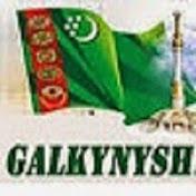 GALKYNYSH net worth