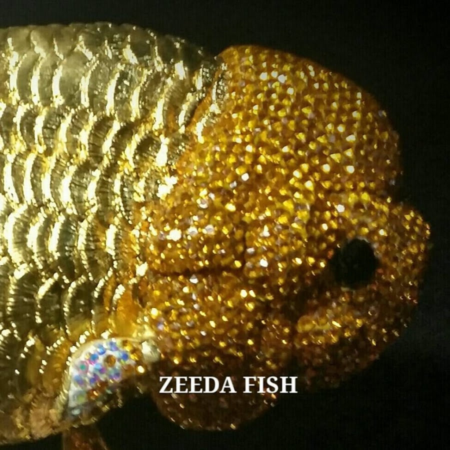 ZEEDA FISH