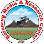 Baraarug Media net worth