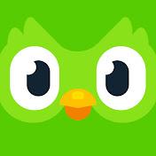 Duolingo net worth