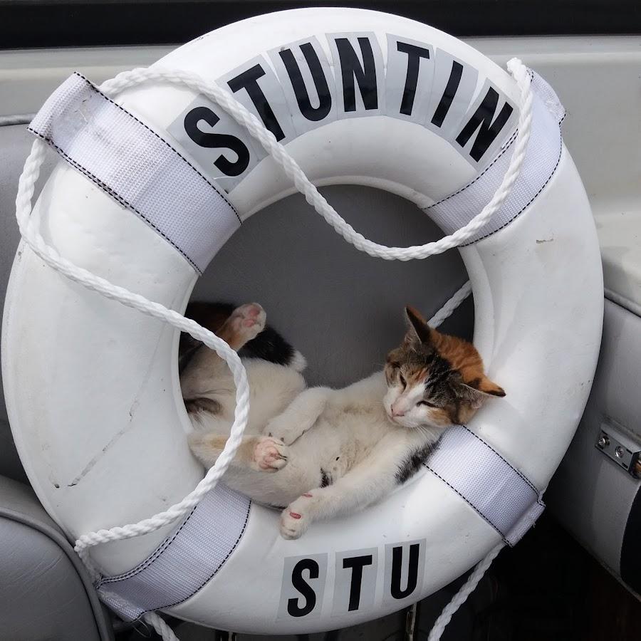 Stuntin'Stu