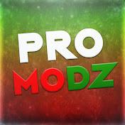 Pro Modz net worth