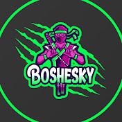 BOSHESKYTV net worth