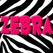 Zebra Nursery Rhymes - Kids Song and Cartoons net worth