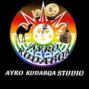 Arho studio net worth