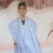 sidimohamed meinouh سيد محمد أمينوه net worth