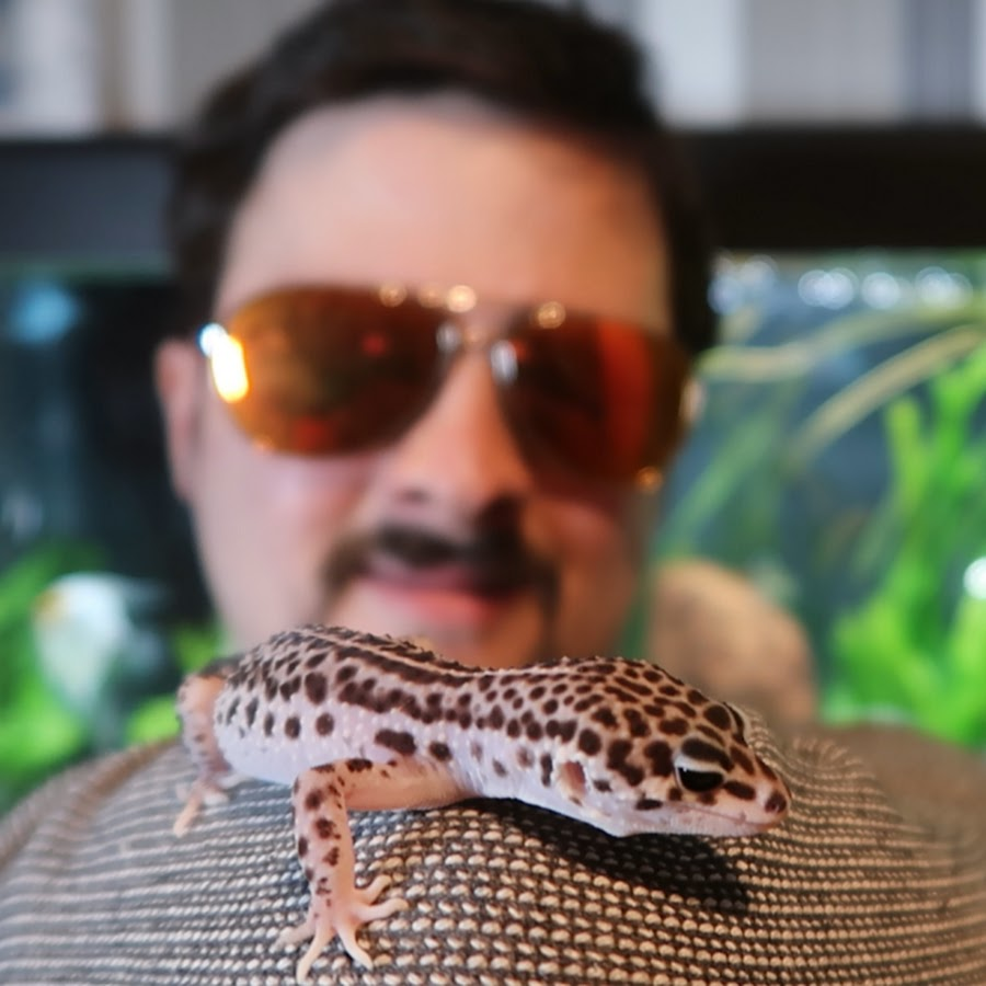 Joe Maddo's Pets
