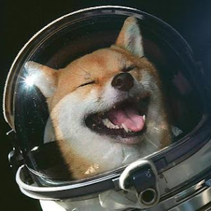 Space Chief