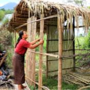 Pailin Lifestyle net worth