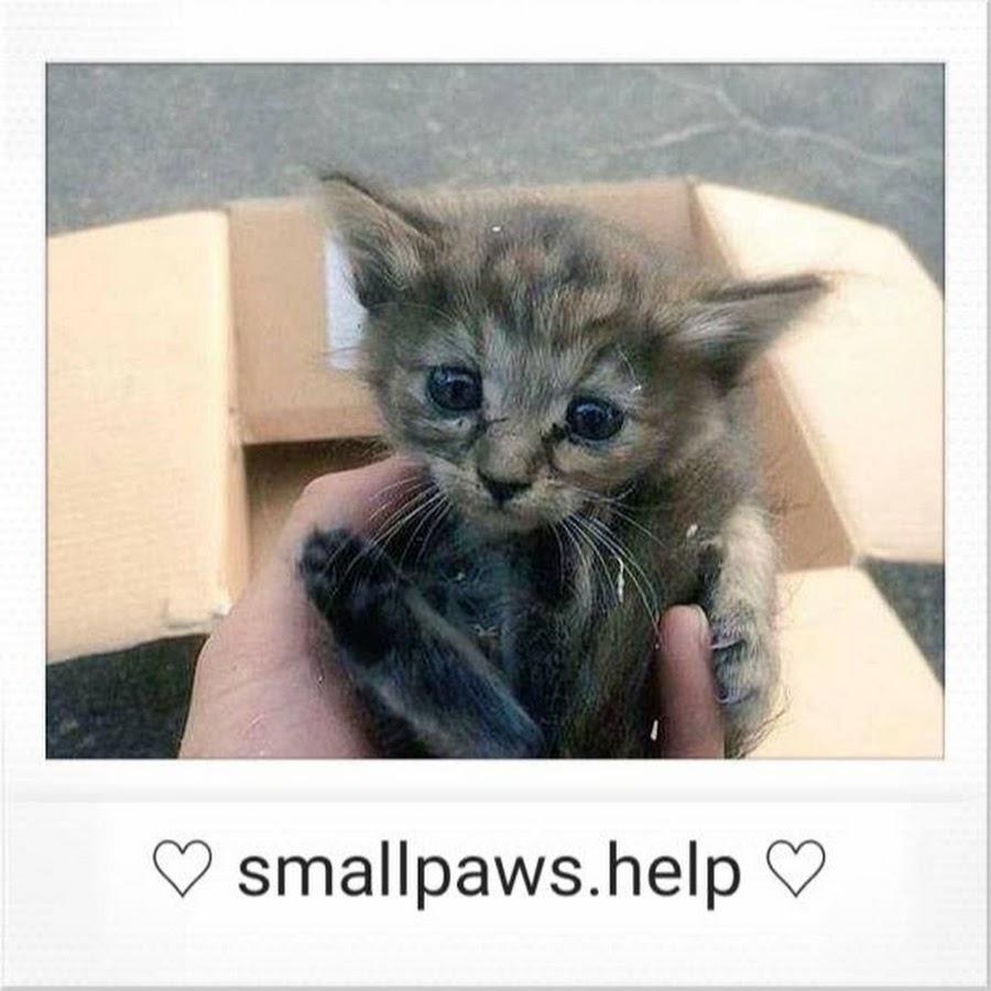 smallpaws.help