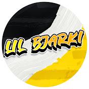 Lil Bjarki net worth
