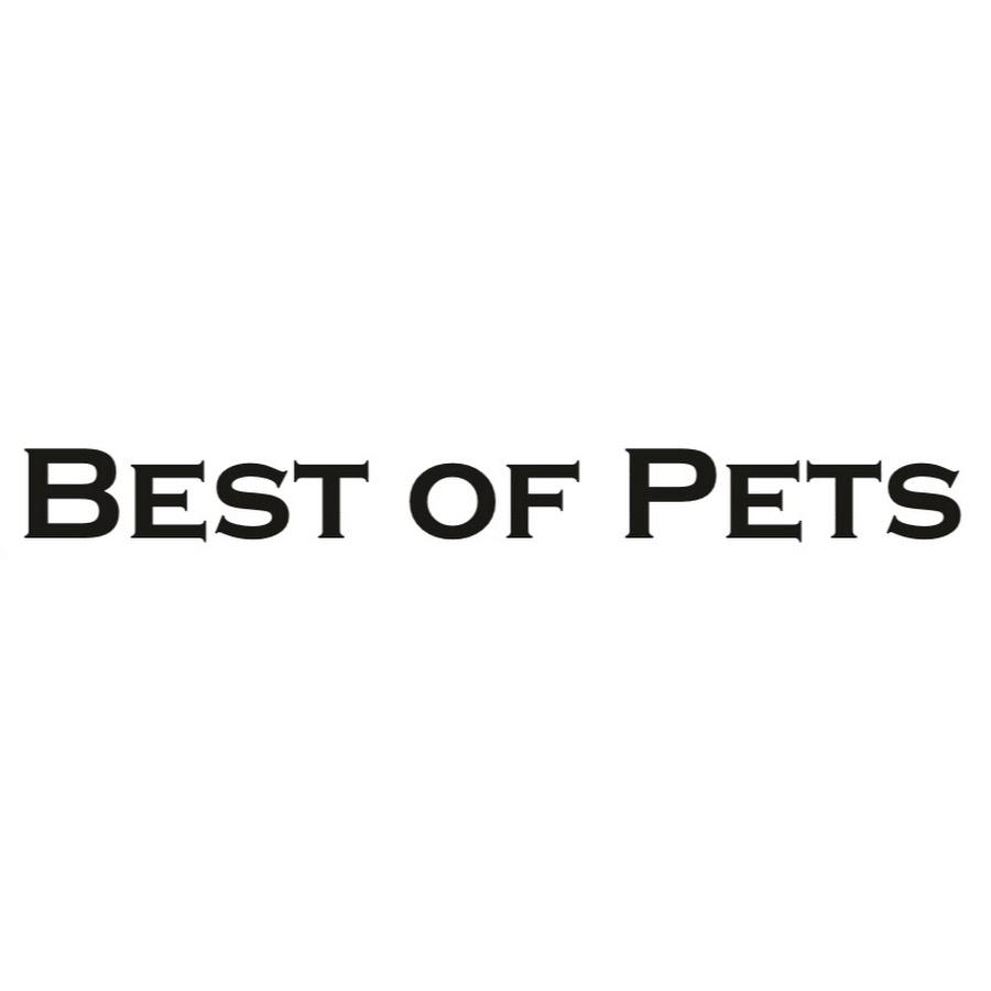 Best Of Pets