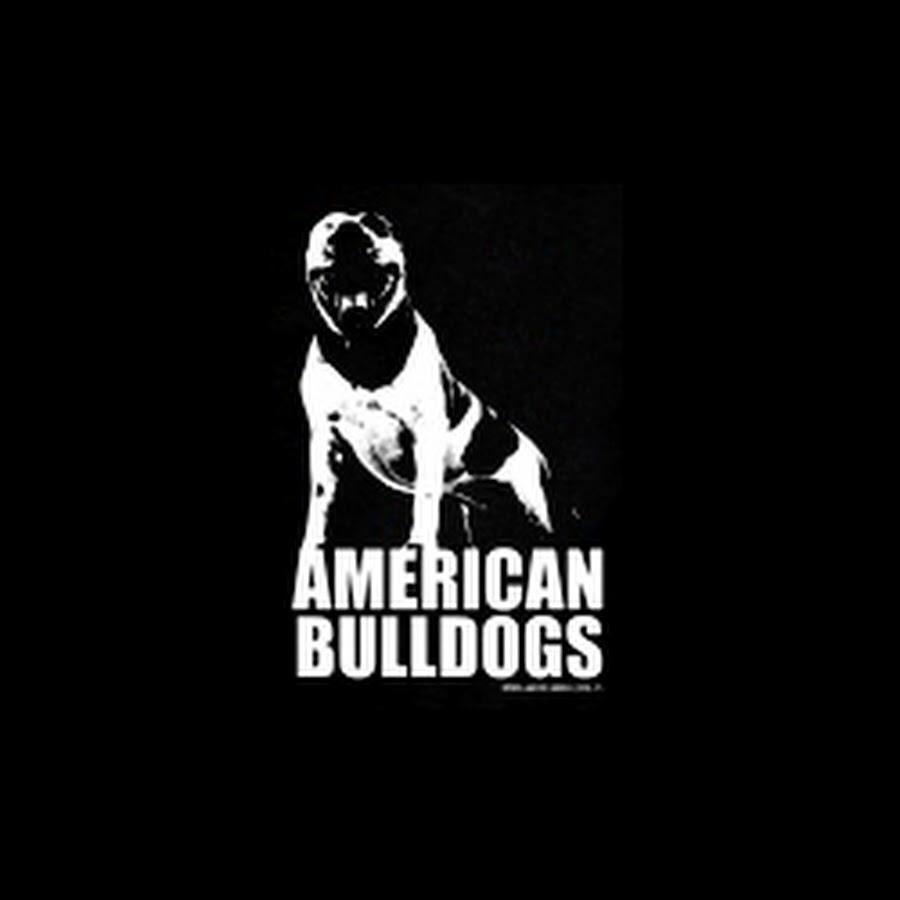 AmericanBulldogs