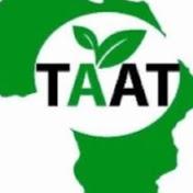 TAAT Africa net worth