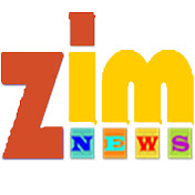 Zim News net worth