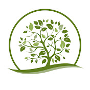 힐링트리뮤직 Healing Tree Music & Sounds